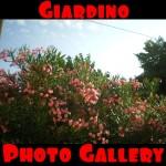 Giardino: photo gallery