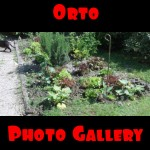 Orto: photo gallery