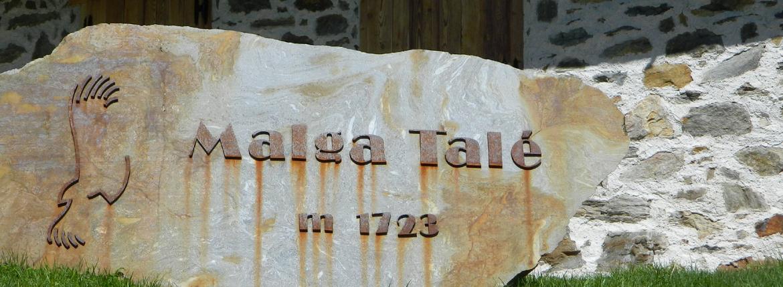 Malga Talé. Bosco degli Urogalli