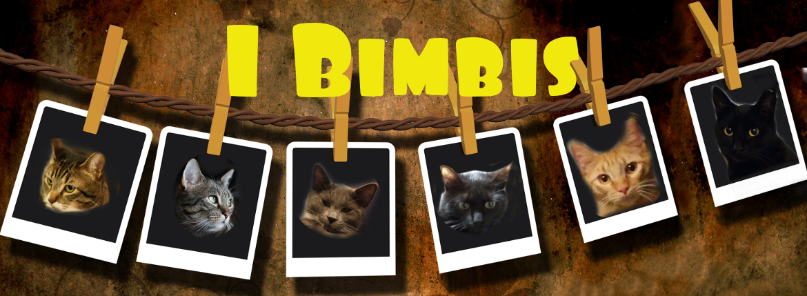 "Cover ""I bimbis"""