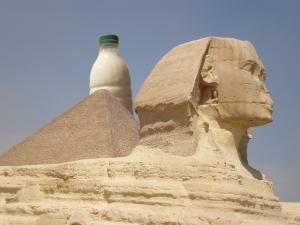 Il Latte e la Sfinge